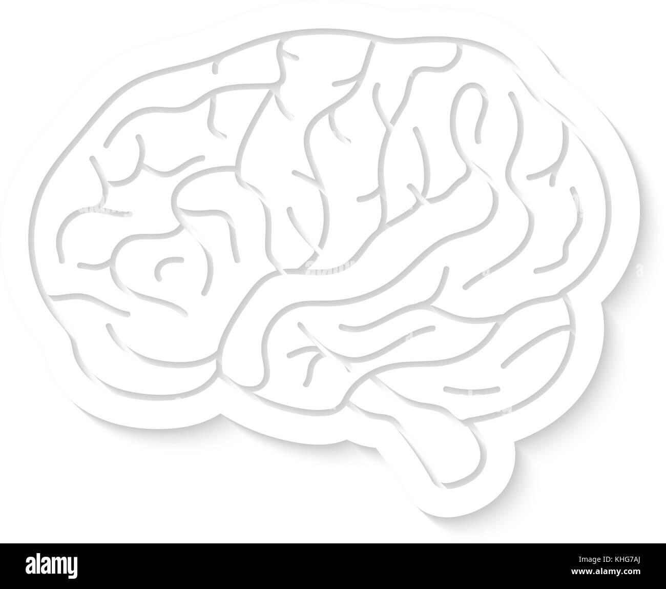 white brain icon with shadow - Stock Image