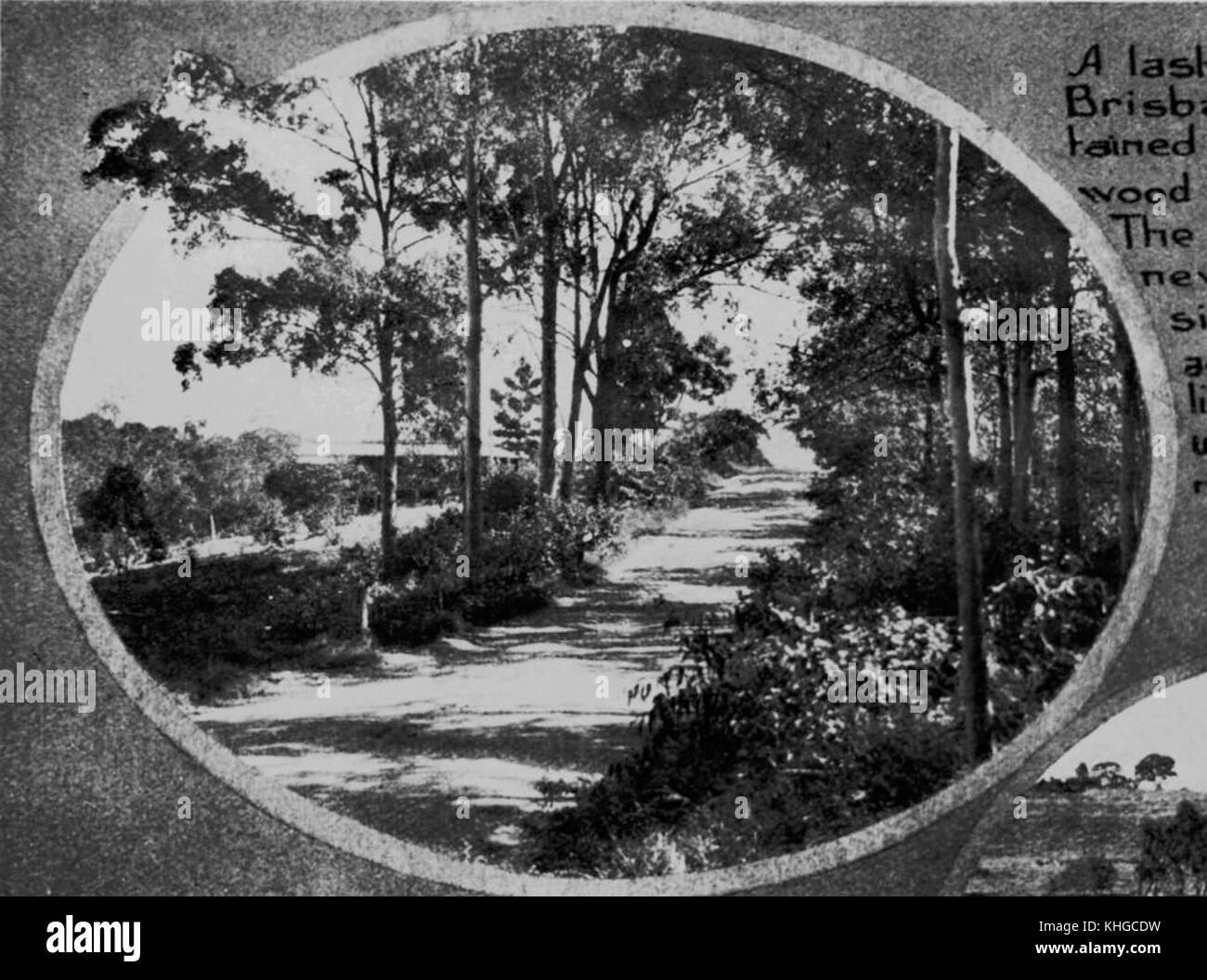 1 68671 Along the road in Moggill in 1928 Stock Photo
