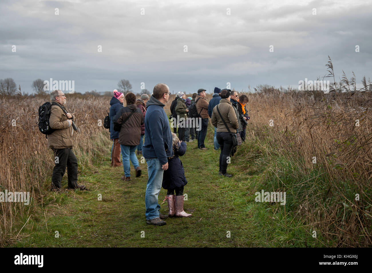 Birdwatching, or birding, birders, wildlife observation binoculars, scopes, optics, tripods at Burscough, Lancashire, Stock Photo