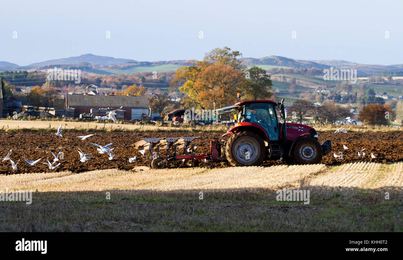 Dundee, Tayside, Scotland, UK. 19th November, 2017. UK weather: Sunny and cold in Dundee with temperatures plummeting Stock Photo