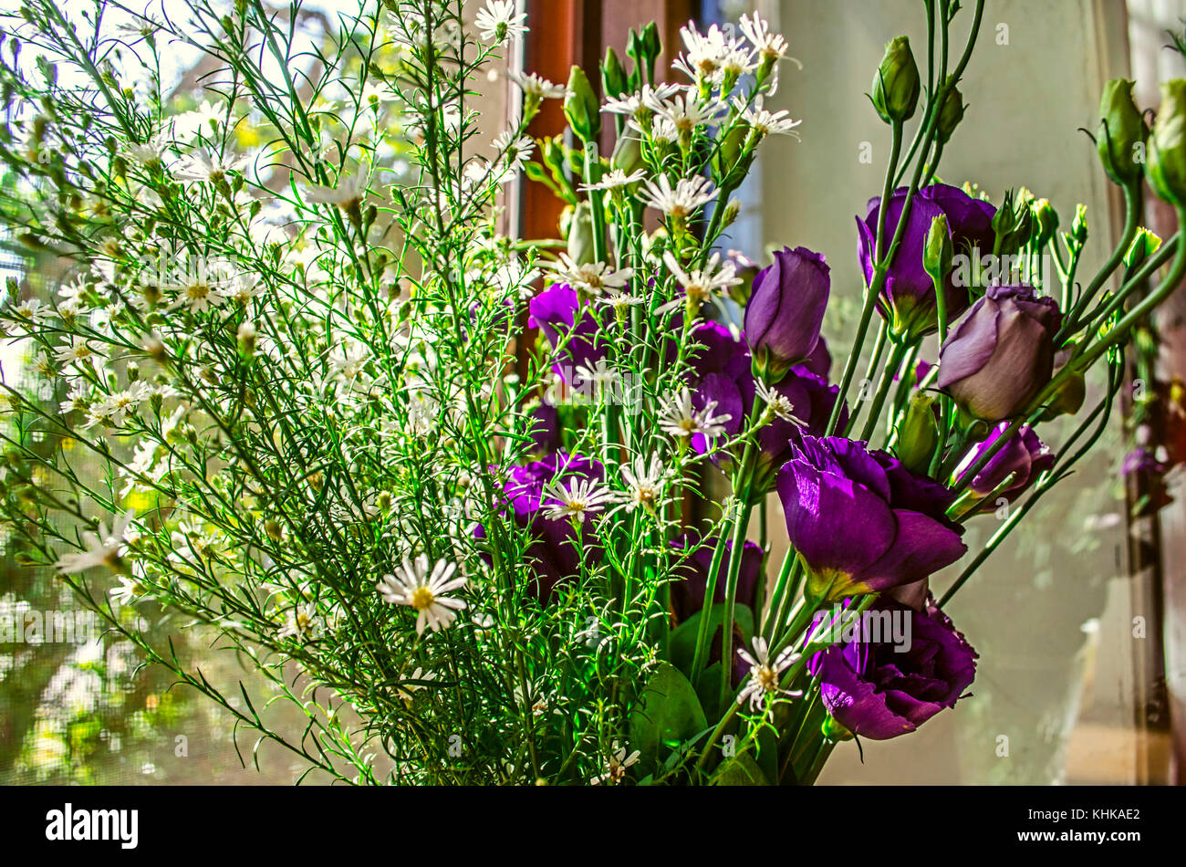 Purple flowers Lisianthus and branches delicate white wildflowers on the windowsill on a bright sunny day - Stock Image