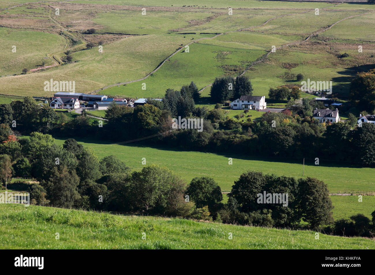 The Annandale valley in the Moffat hills of the Scottish Borders, just north of Moffat - Stock Image