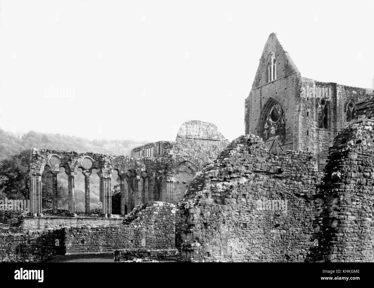 Tintern Abbey, 12th century Cistercian abbey on the banks of the River Wye at Tintern, Monmouthshire, Wales UK  - Stock Image