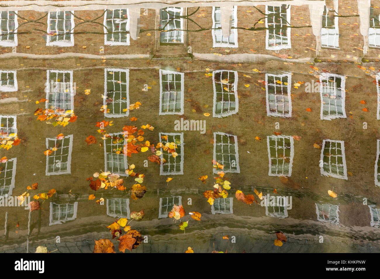 The windows of Bristol City Hall reflected in the moat water, with russet, gold, brown and yellow leaves floating - Stock Image