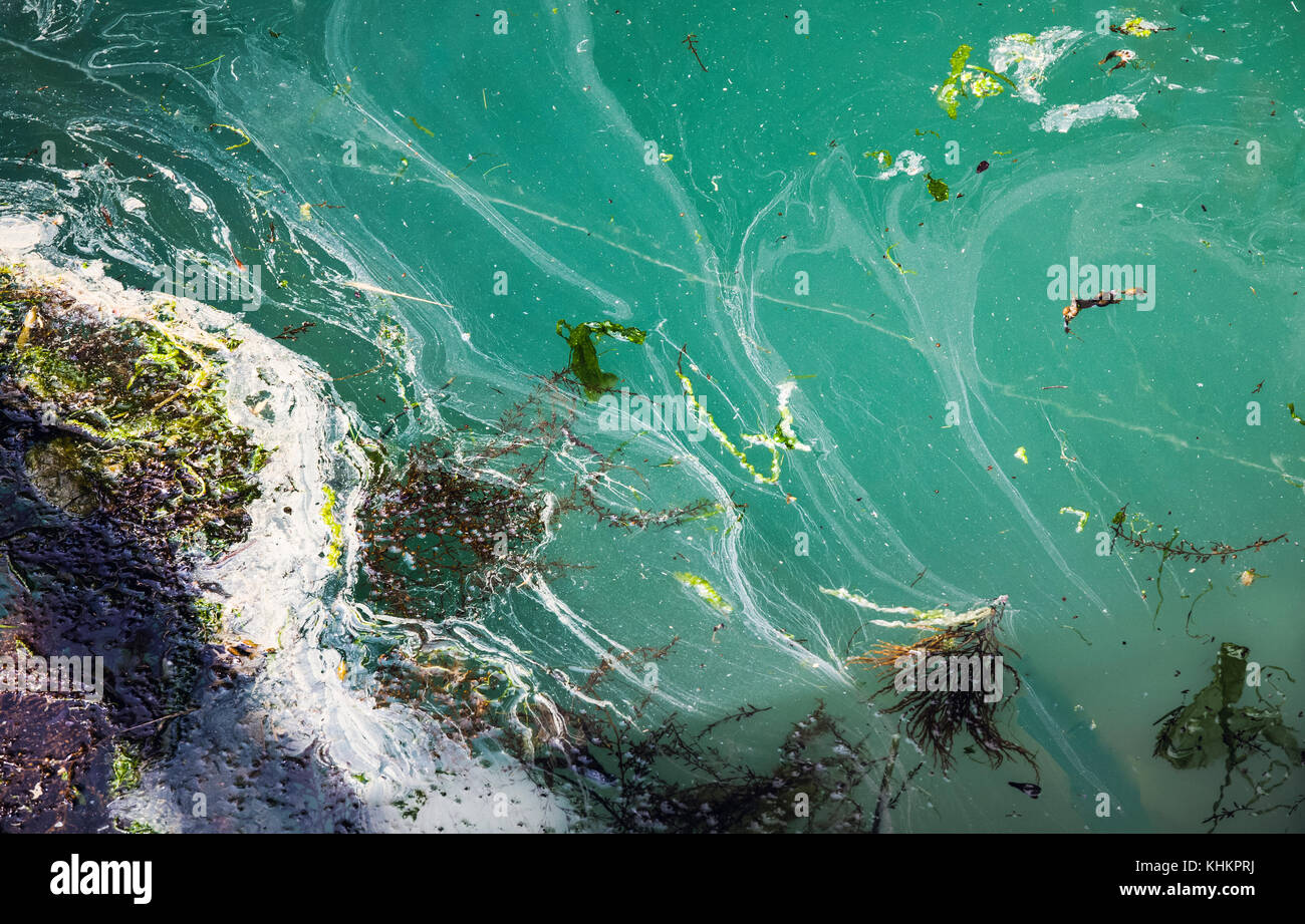 Yarmouth harbour, Isle of Wight, Hampshire, England with abstract of algae and scum floating on the water at  2017 - Stock Image