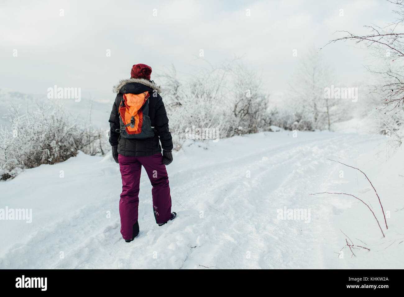 Back view of a woman dressed warm solo hiking in winter - Stock Image