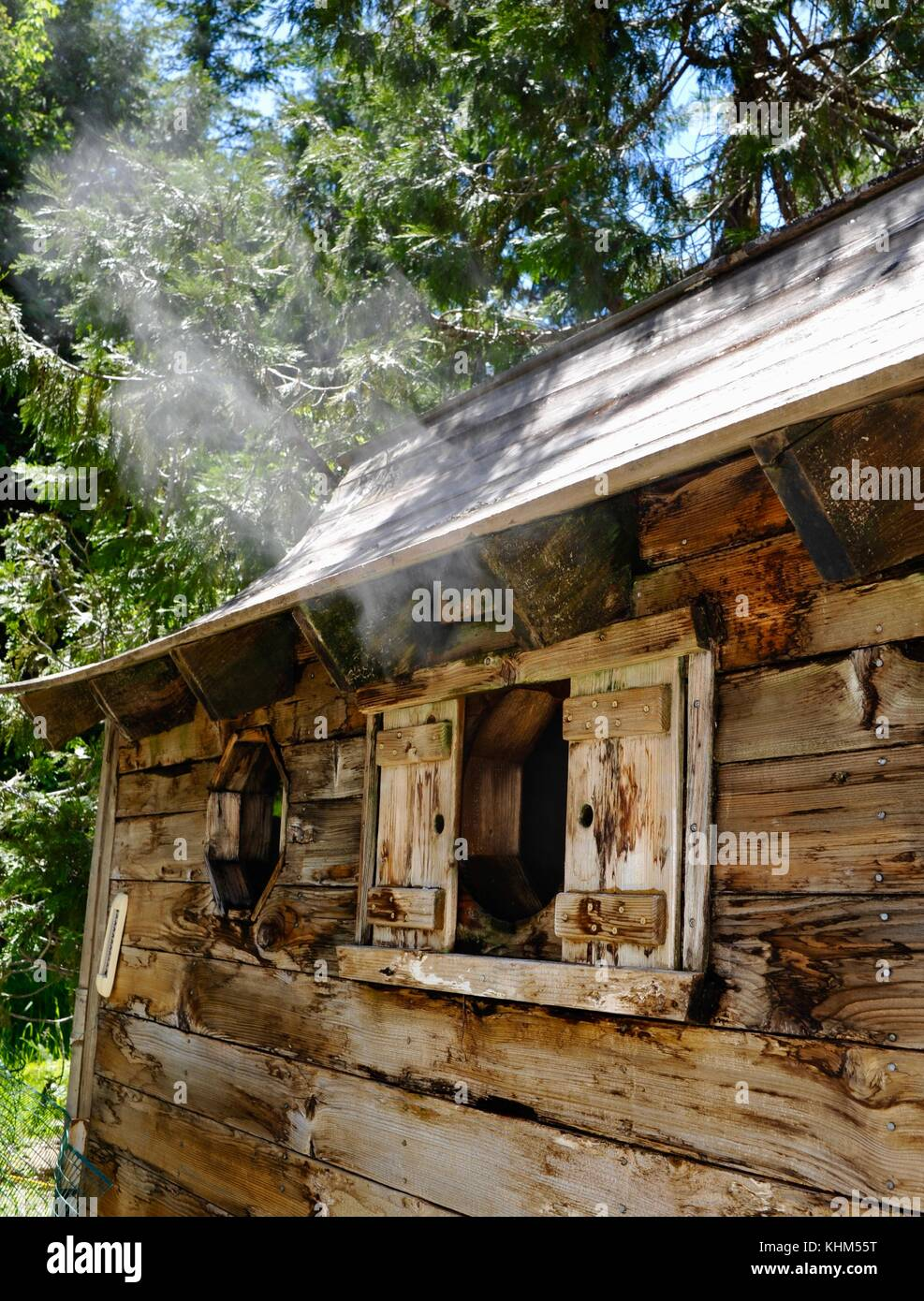 Natural wooden sauna from hot springs, with steam flowing through window, Breitenbush Hot Springs, adjacent to Mt. - Stock Image