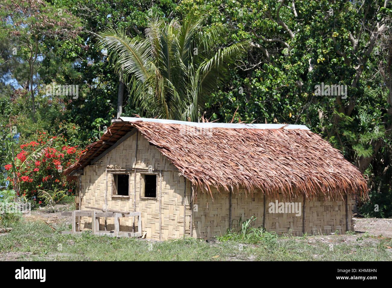 Hut and trees in Efate island, Vanuatu - Stock Image