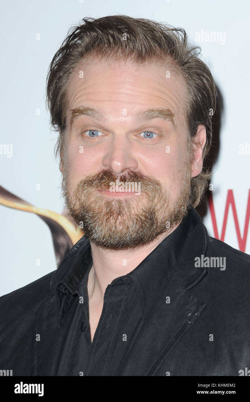 NEW YORK, NY - FEBRUARY 19: David Harbour  attends the 69th Annual Writers Guild Awards New York ceremony at Edison - Stock Image