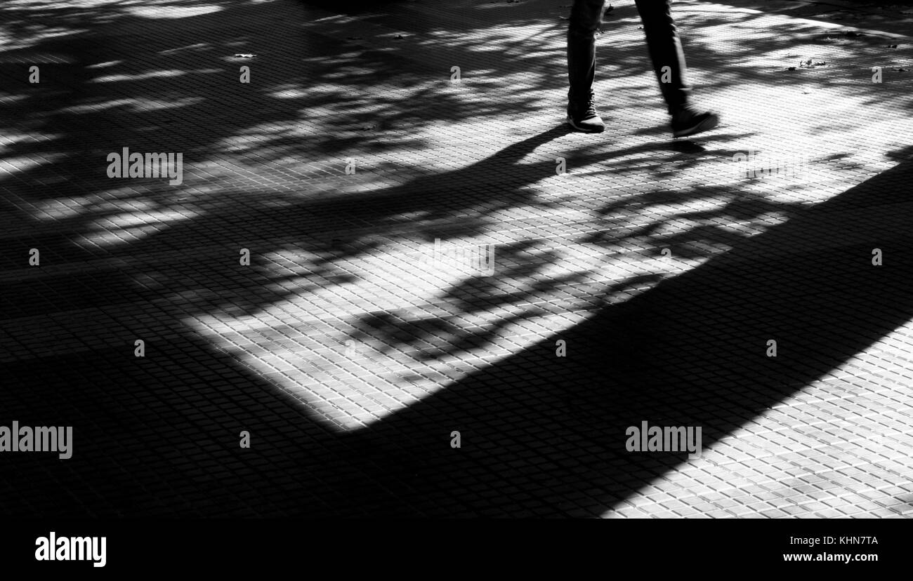 Shadows and silhouettes of a person walking in motion blur and trees in autumn on city street sidewalk in black - Stock Image