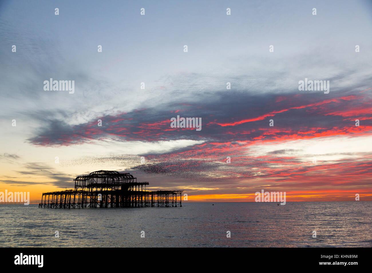Brighton, UK. Starling murmurations at sunset over Brighton's derelict west pier. Stock Photo