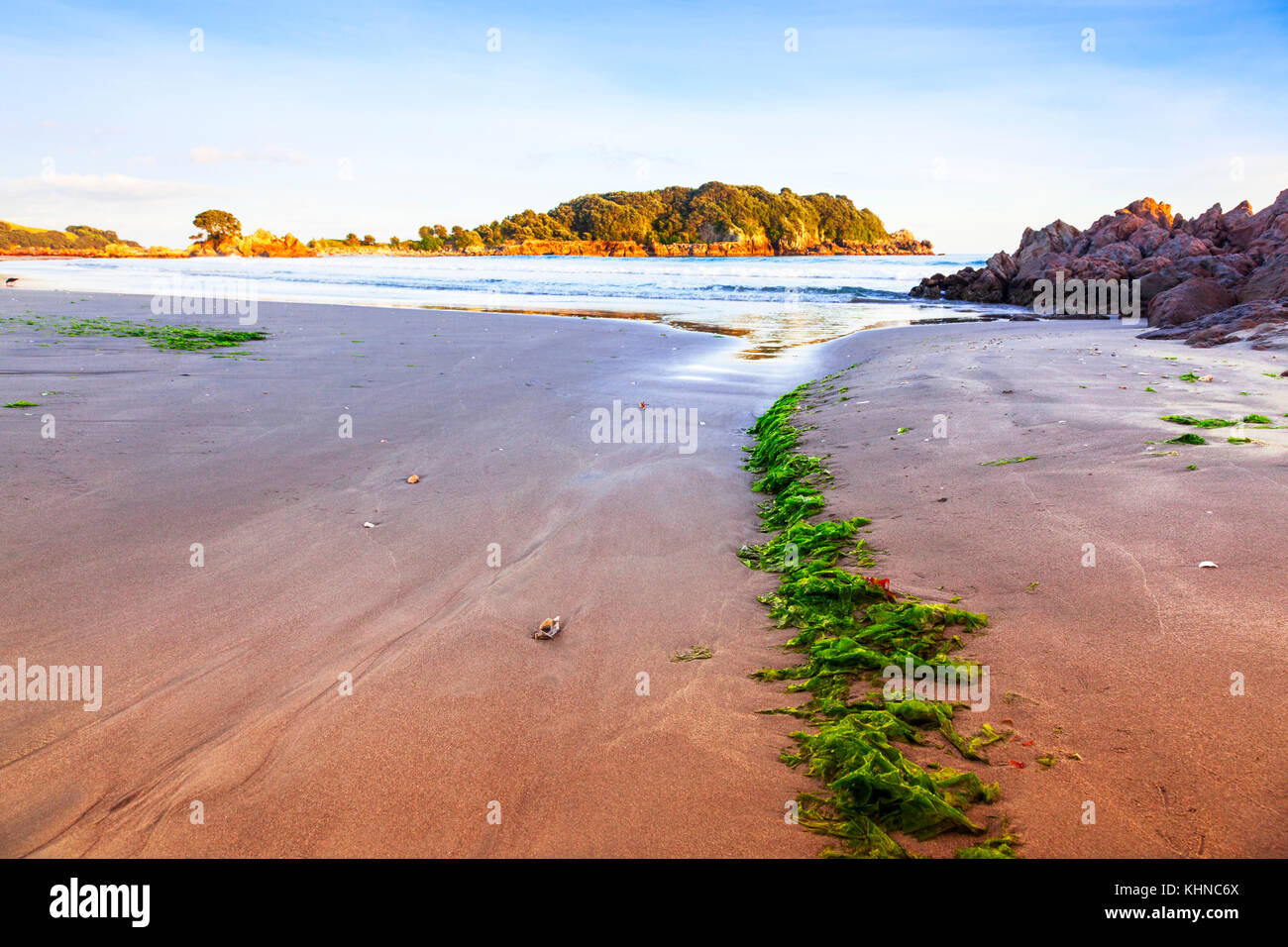 Early morning on the beach at Mount Maunganui, Bay of Plenty, New Zealand.Said to be the best beach in New Zealand - Stock Image