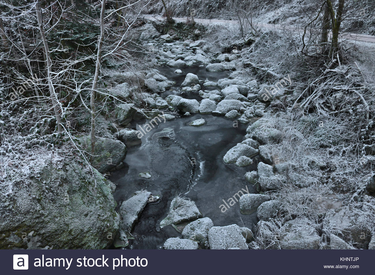 Frozen stream during winter in the black forest - Stock Image