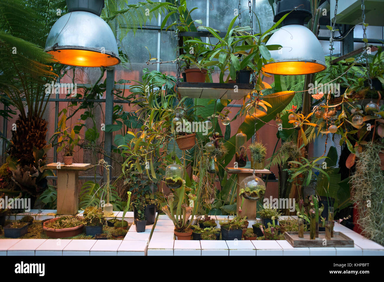 Giant Greenhouse Stock Photos & Giant Greenhouse Stock Images - Alamy