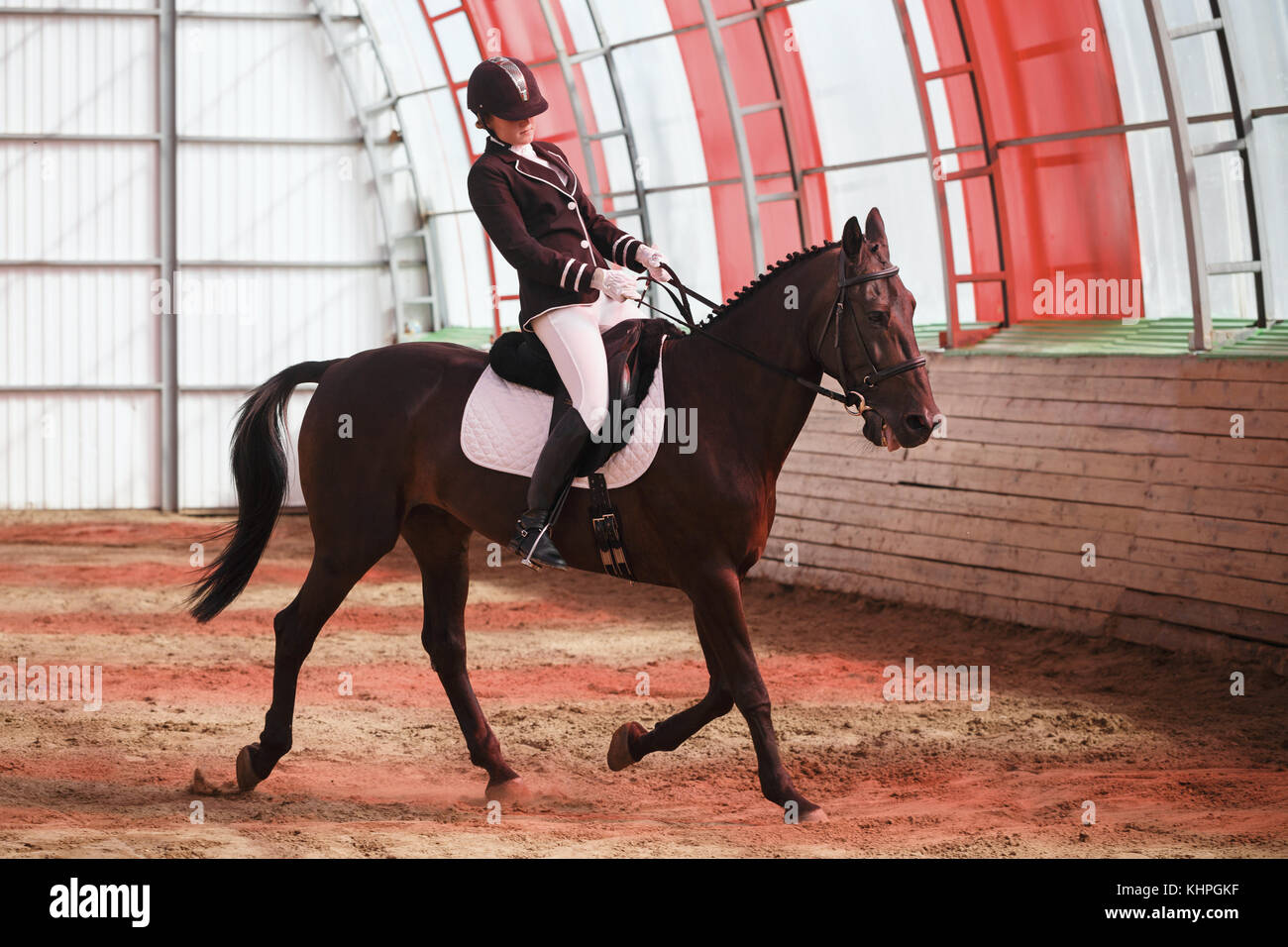 A sweet girl jockey rides a horse in a covered arena. Training of the Spanish lynx. A pedigree horse for equestrian - Stock Image