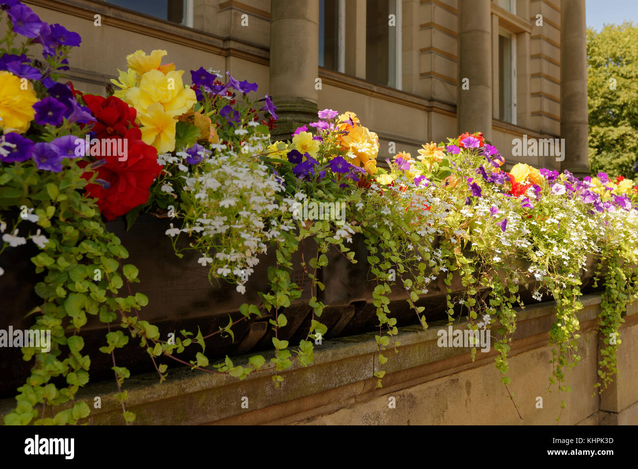 Floral Library Stock Photos & Floral Library Stock Images - Alamy