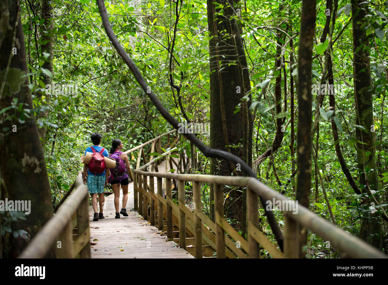 Tourist groups in Manuel Antonio national Park, Costa Rica, Central America. Tourists gather around a guide to get Stock Photo