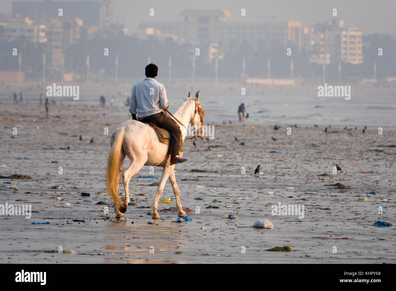Man rides horse along polluted Juhu Beach, Mumbai Stock Photo