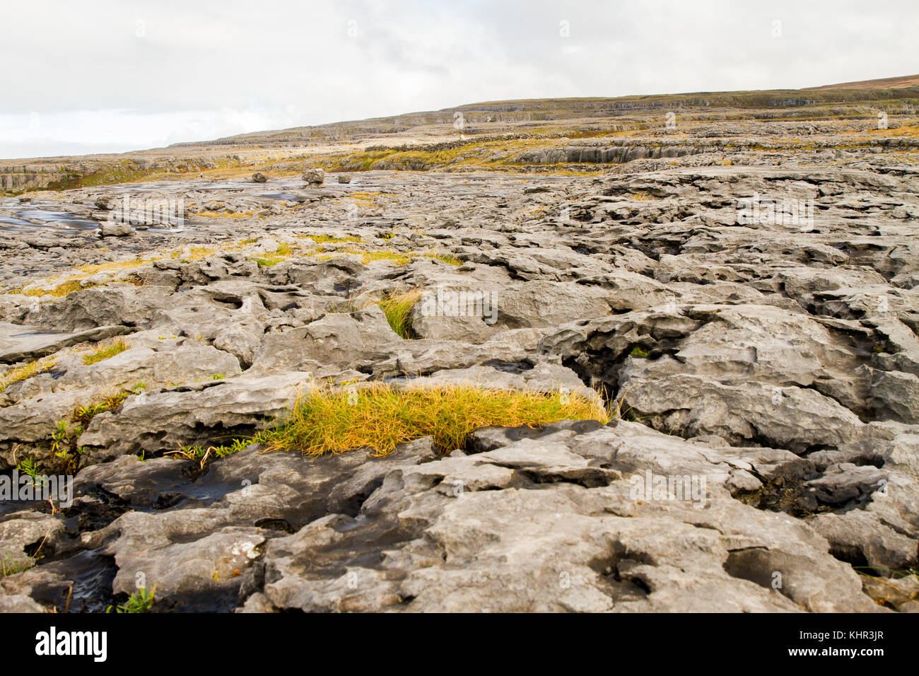 The Burren (in Irish: Boireann - great rock), the karst-landscape region in west County Clare, Ireland. - Stock Image