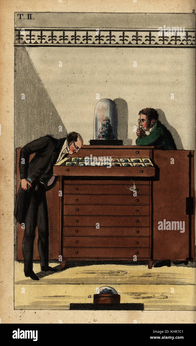 Geologists studying fossil examples stored 40 to 50 per drawer in a cabinet of curiosities. Handcoloured copperplate - Stock Image