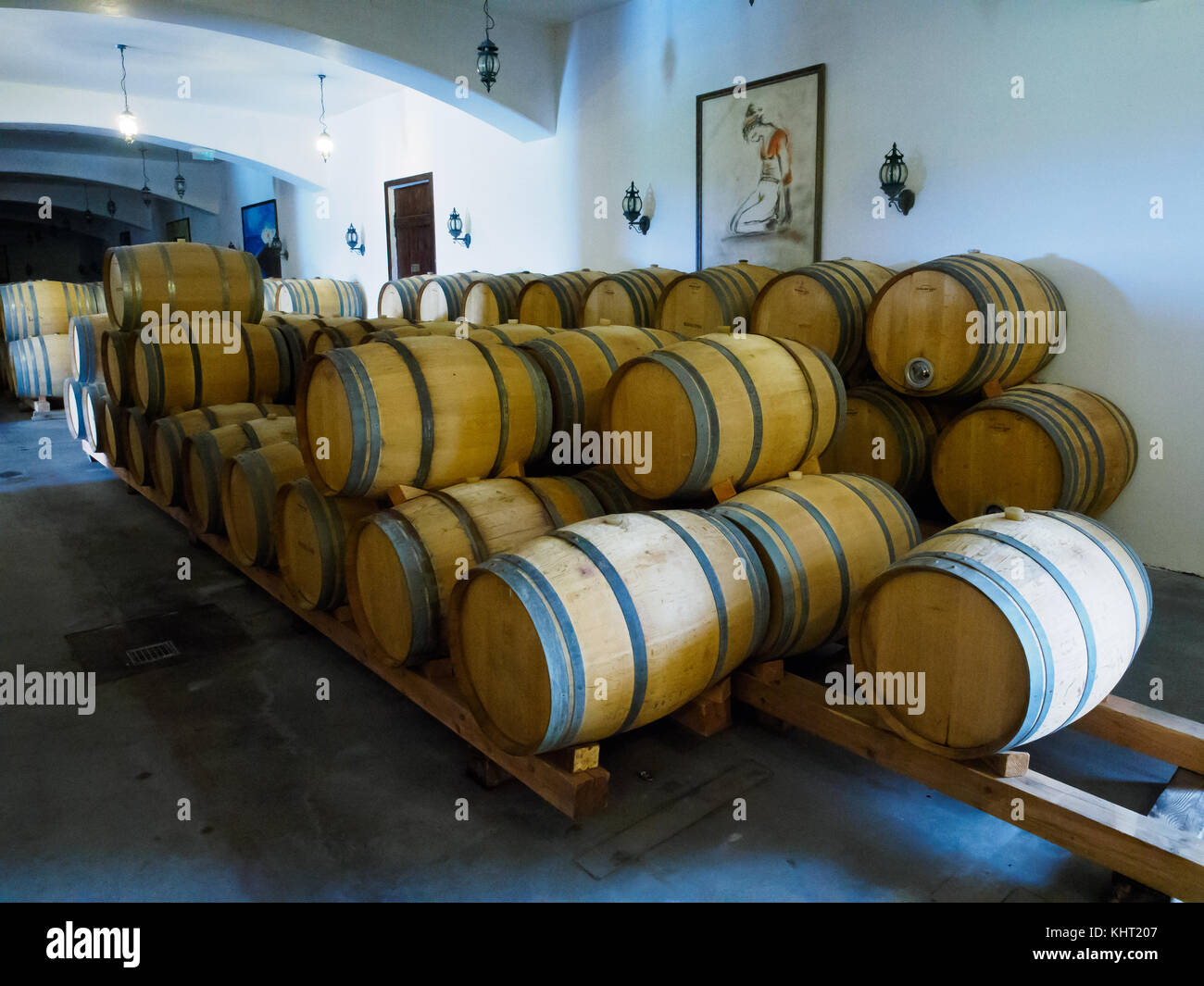 Wine barrels lined up in the winery storage room. - Stock Image