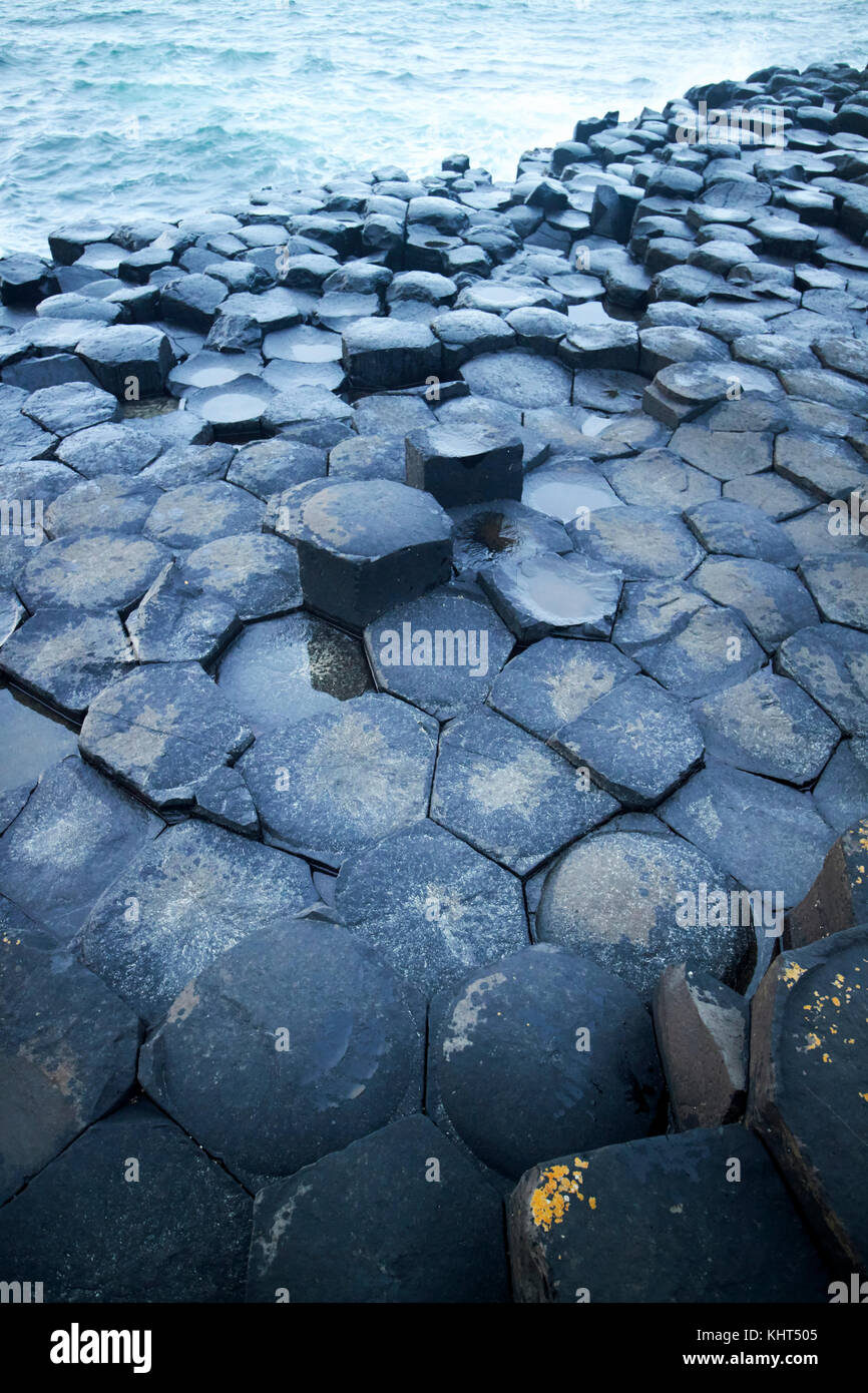 rocks in evening twilight at the Giants Causeway county antrim northern ireland uk - Stock Image