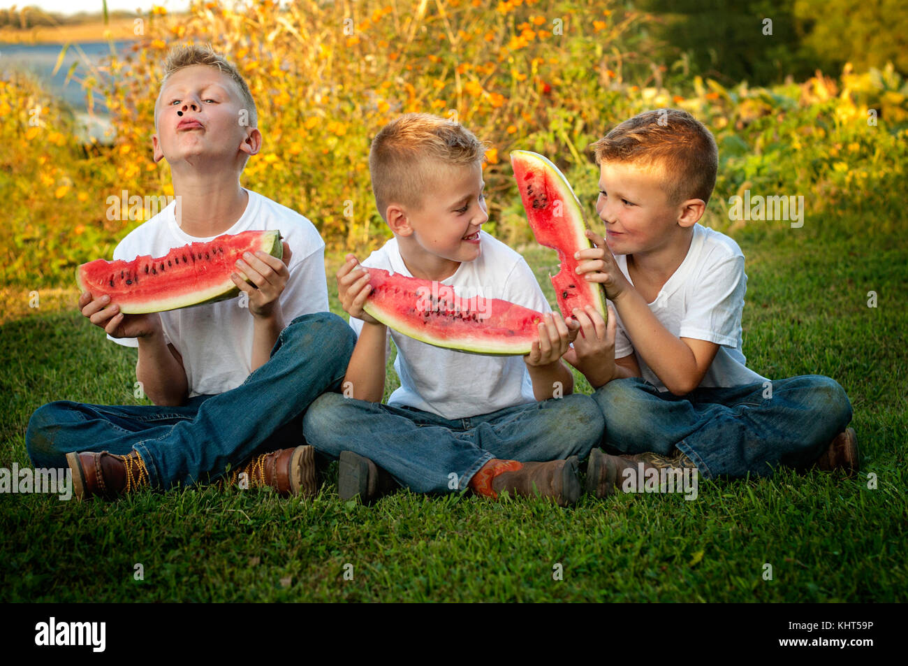 Three brothers eating large slices of watermelon on a farm - Stock Image