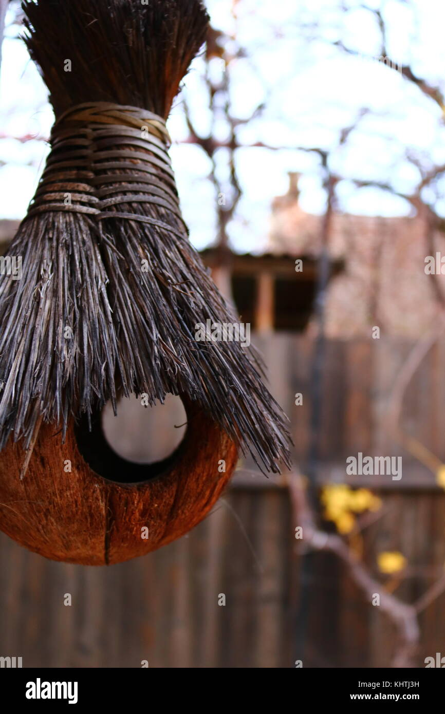 Autumn Decor - Bird Nest - Halloween - Stock Image