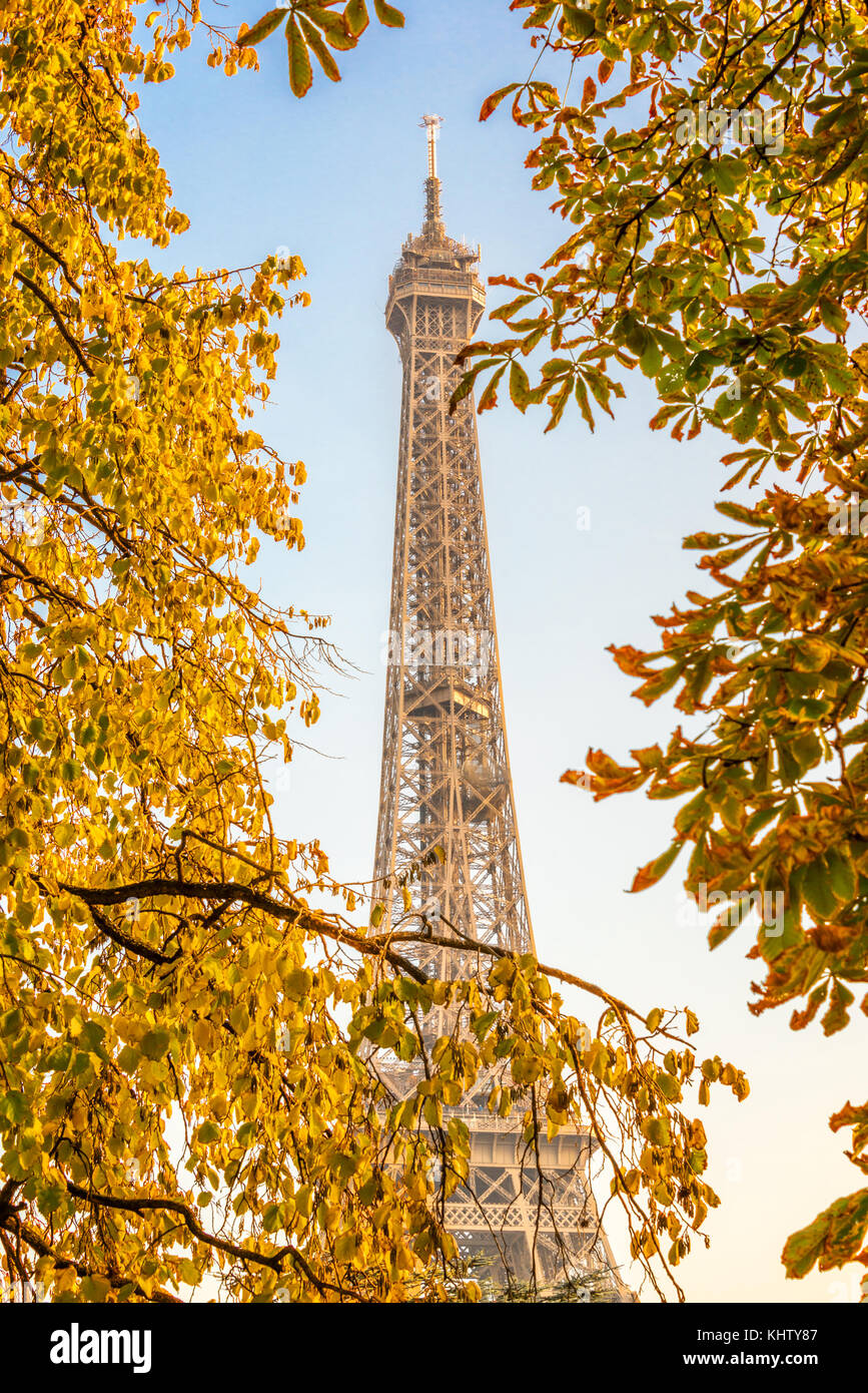 Eiffel tower, yellow automnal trees, Paris France - Stock Image