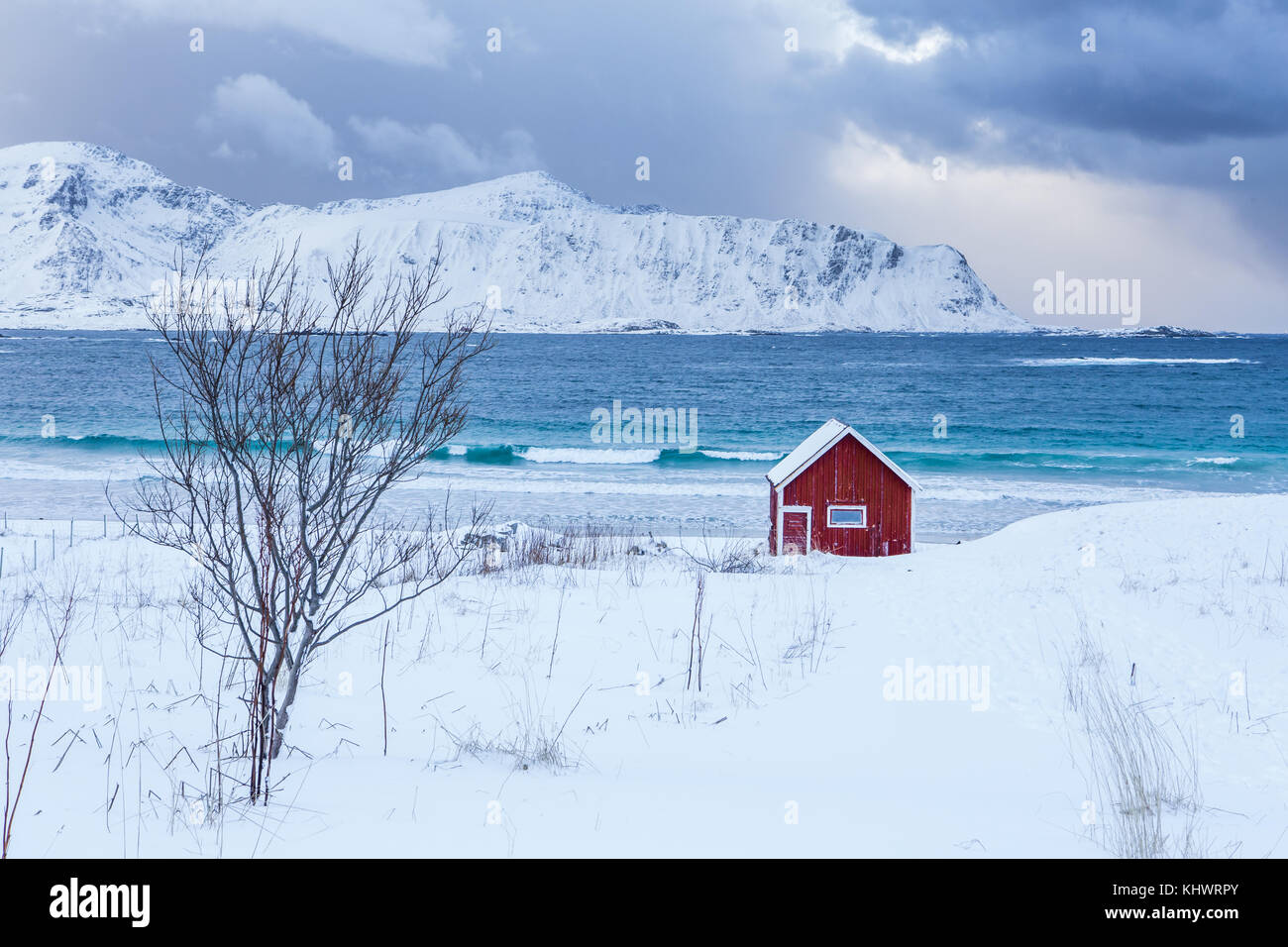 A typical house of the fishermen called rorbu on the snowy beach frames the icy sea at Ramberg Lofoten Islands, - Stock Image