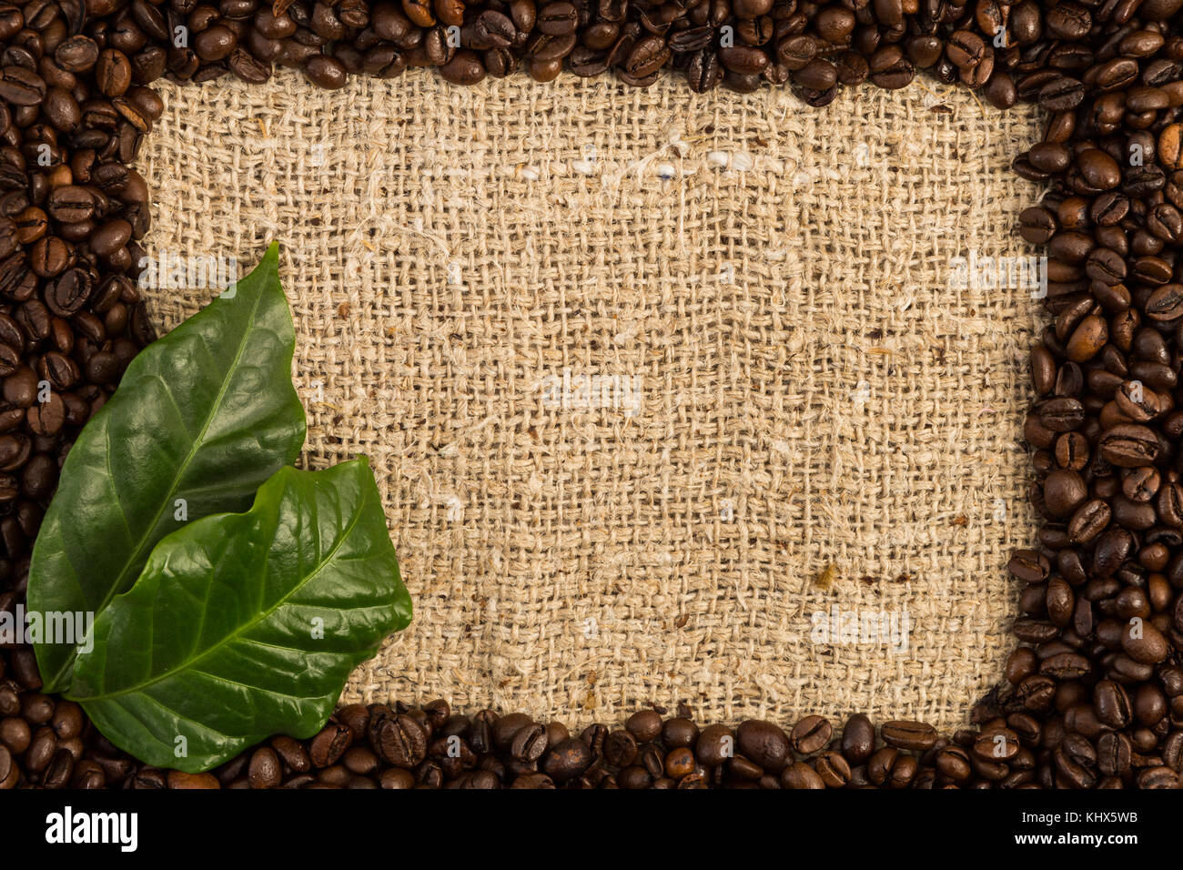 Full coffee frame on jute bag with fresh green leaves and copy space or textspace - Stock Image