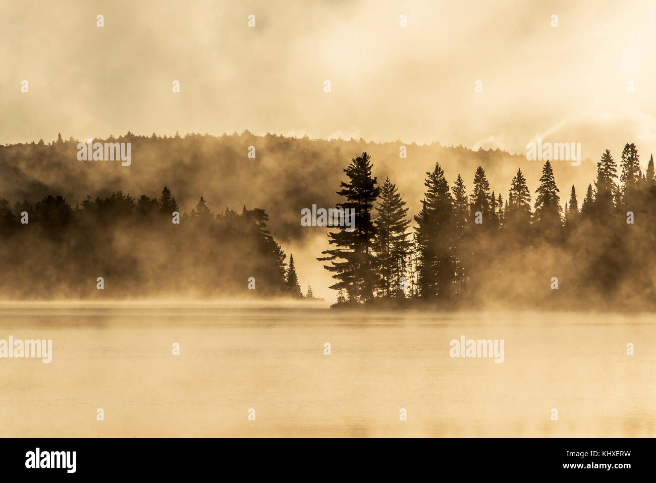 Lake of two rivers in algonquin national park ontario canada sunset sunrise with fog foggy mystical atmosphere background - Stock Image