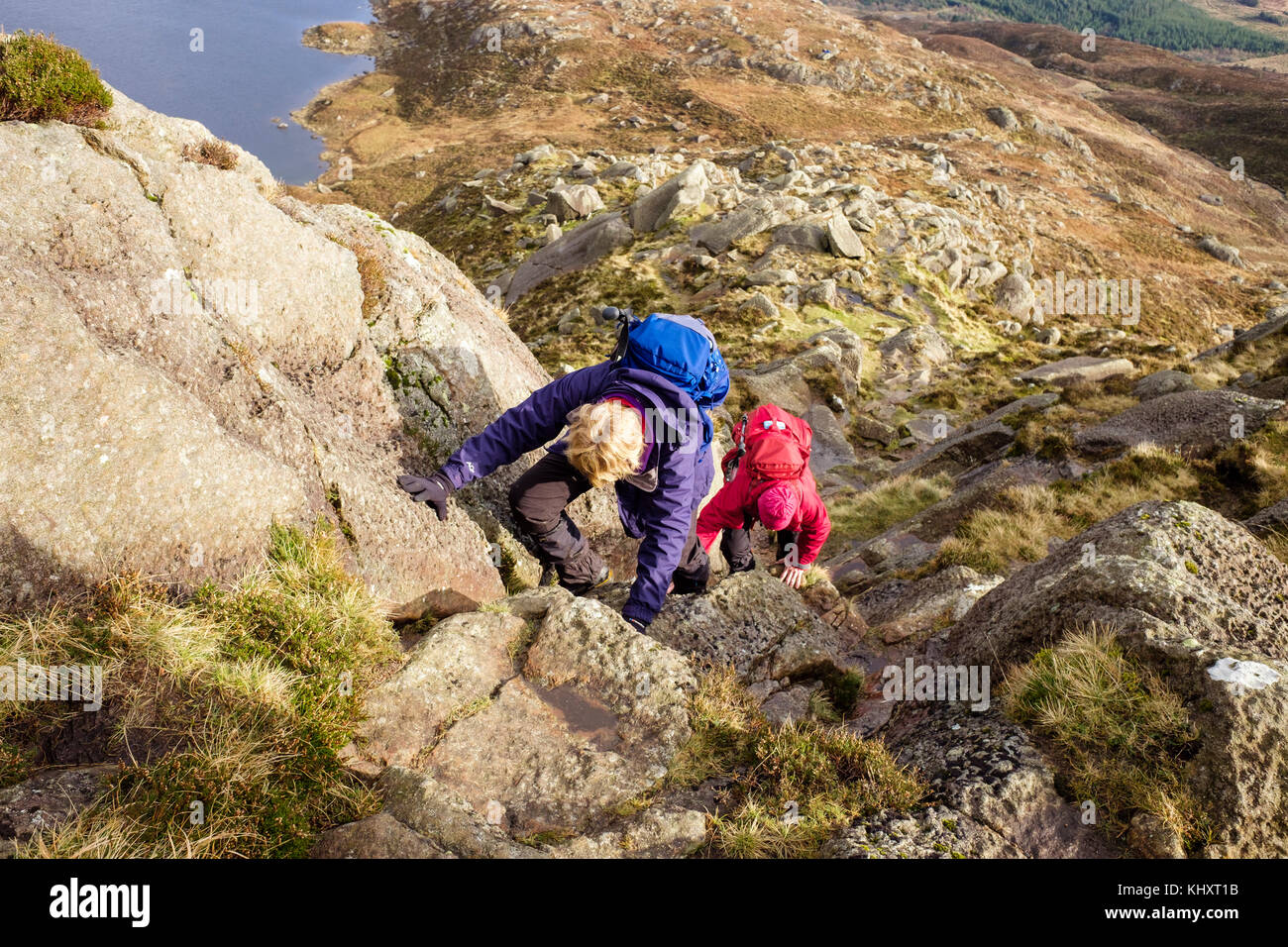 Two Hikers Climbing On Daear Ddu East Ridge Rock Scramble Route Carnedd Moel Siabod Mountain In Mountains Of Snowdonia National Park Wales UK