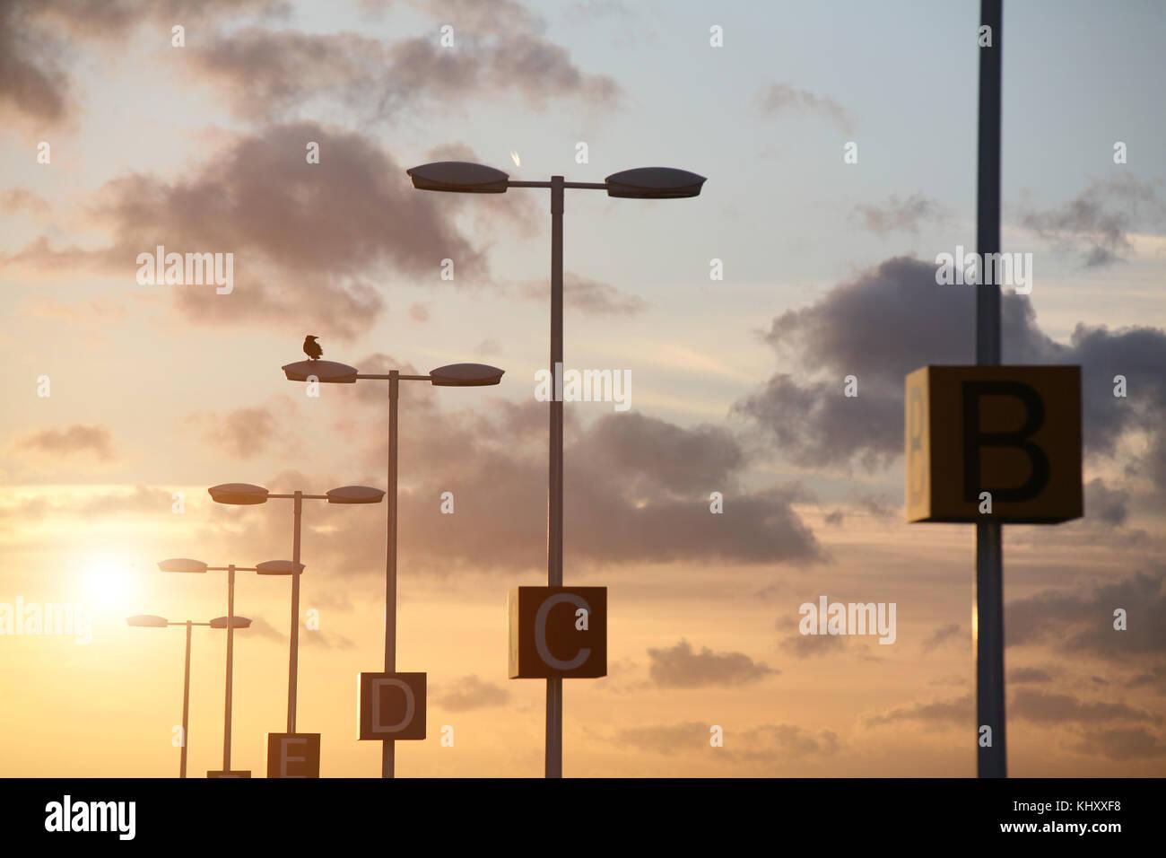 Capital letters on lamppost at sunset, Frankfurt, Hessen, Germany, Europe - Stock Image