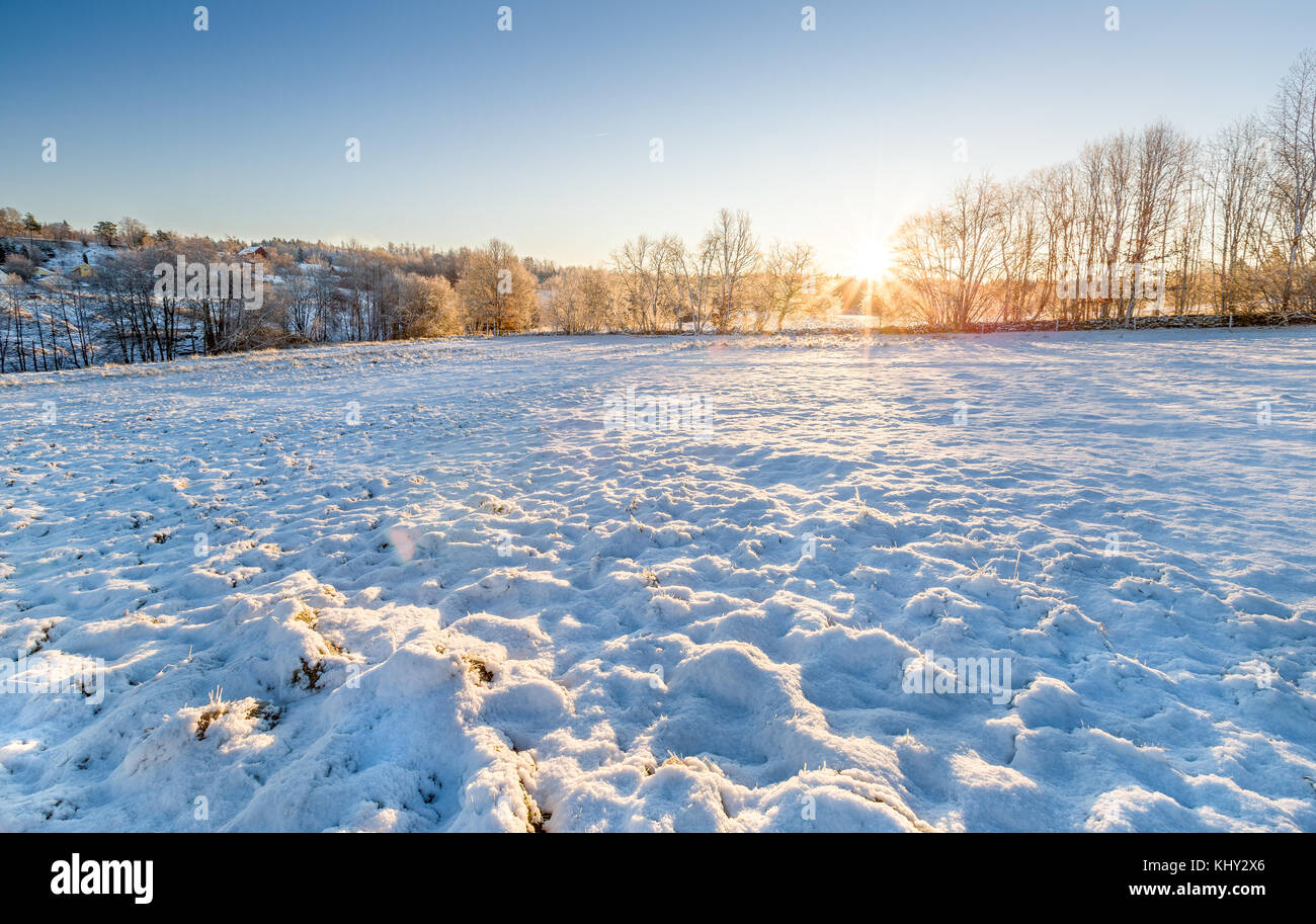 Winter landscape sunrise over snow covered field, with lens flare, in Floda, Sweden  Model Release: No.  Property - Stock Image