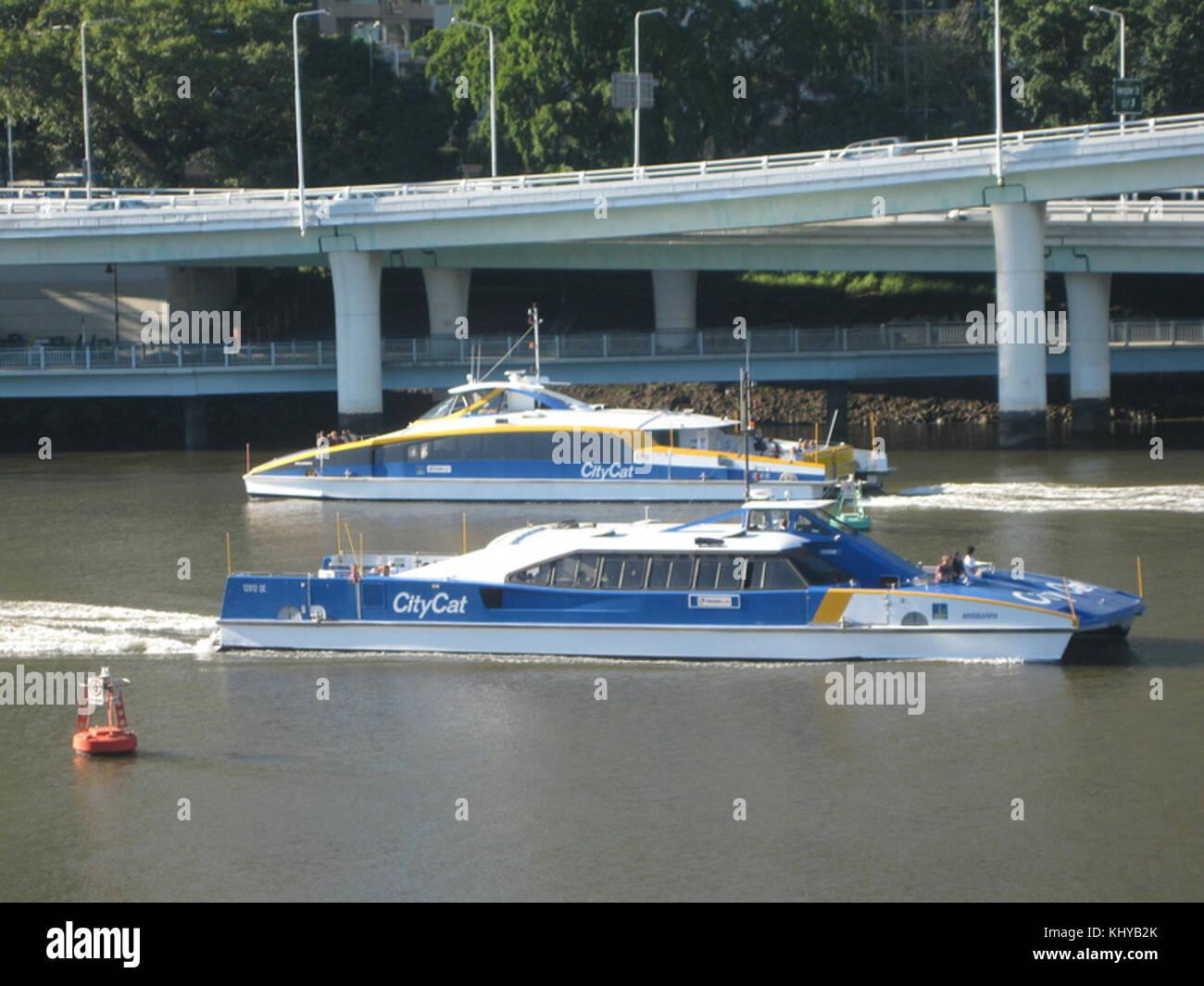 Brisbane CityCats - Stock Image