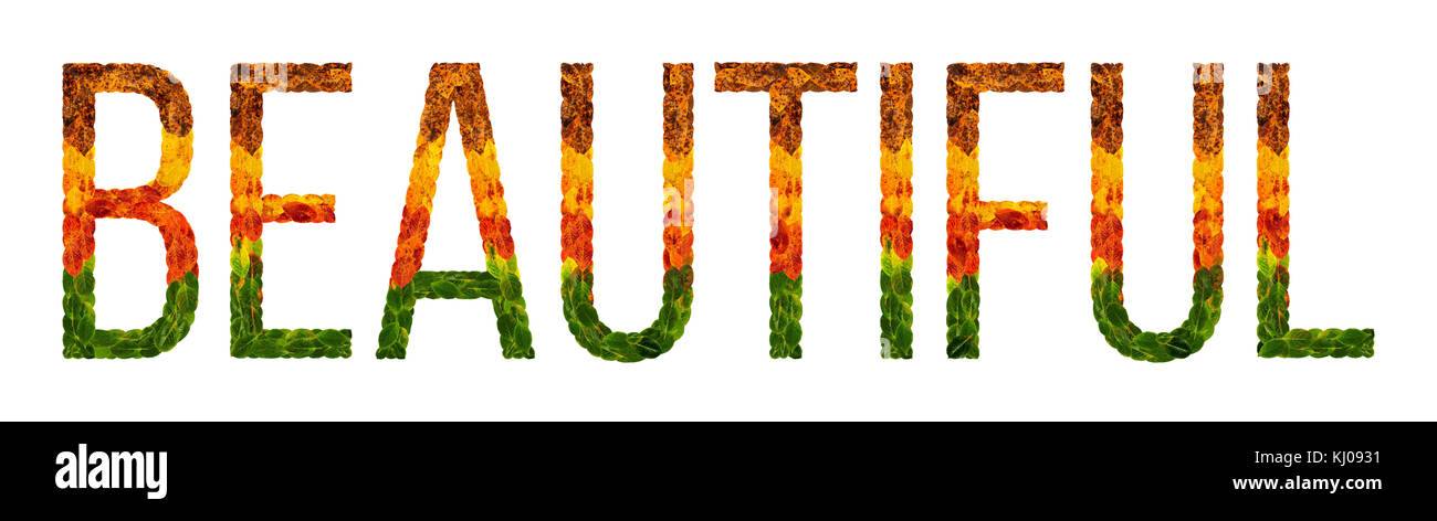 word Beautiful written with leaves white isolated background, banner for printing, creative illustration of colored - Stock Image