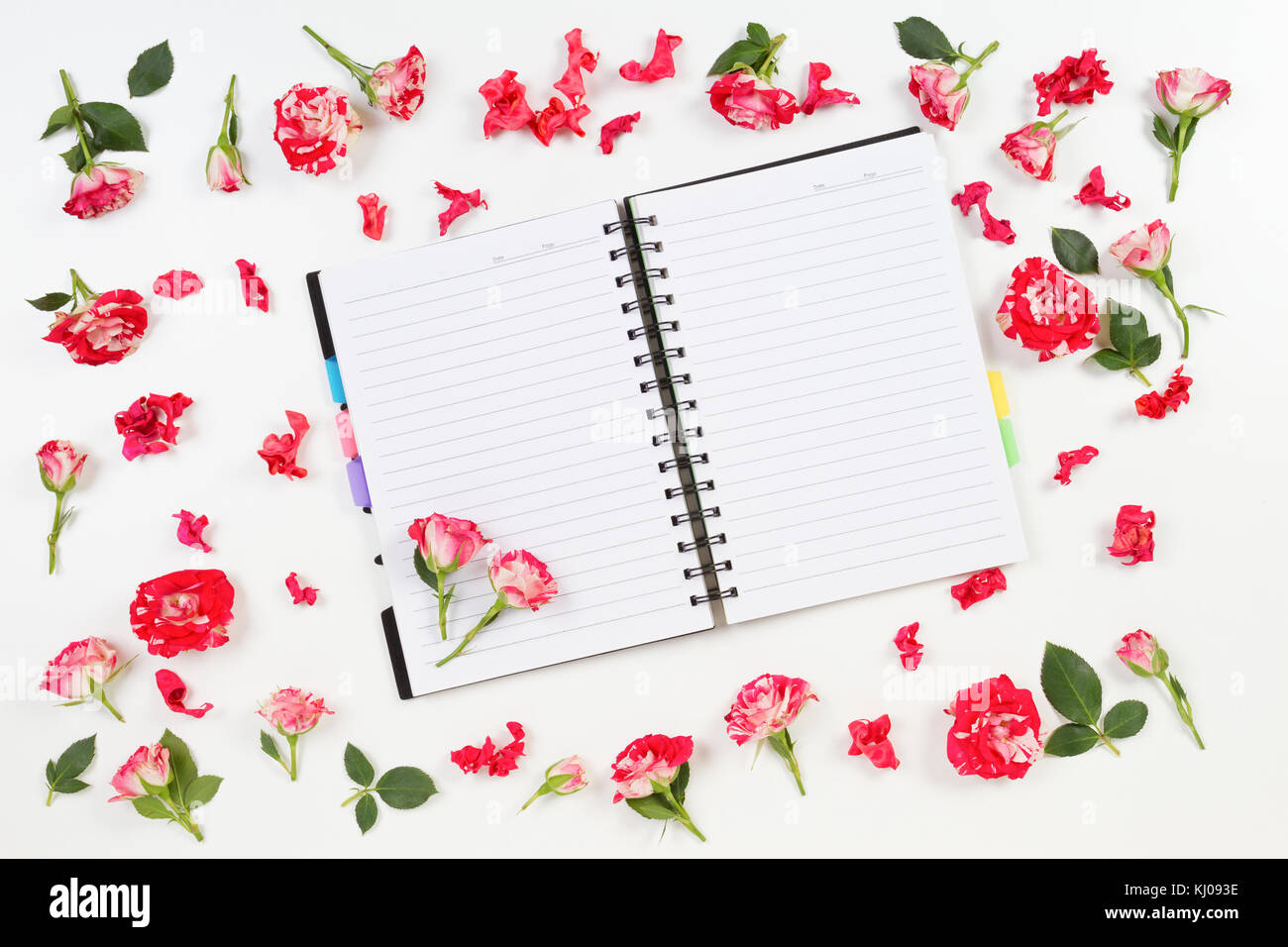 Floral Paper Border Stock Photos Floral Paper Border Stock Images