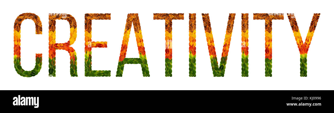 creativity word is written with leaves white isolated background, banner for printing, creative illustration of - Stock Image