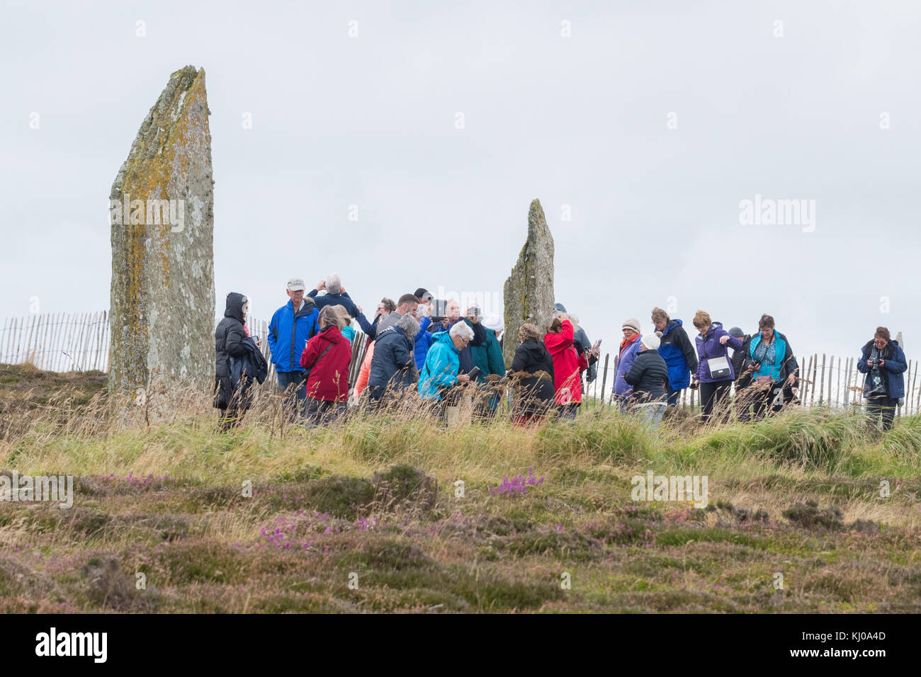 A coach party at the Ring of Brodgar, Orkney Mainland, Scotland, UK - Stock Image