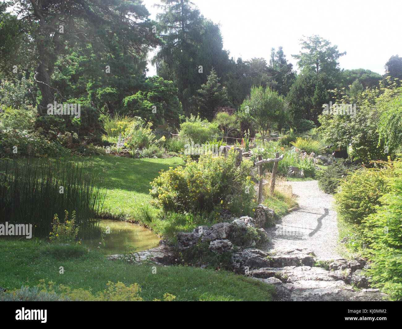 Geneve Jardin Botanique Stock Photo 165973362 Alamy
