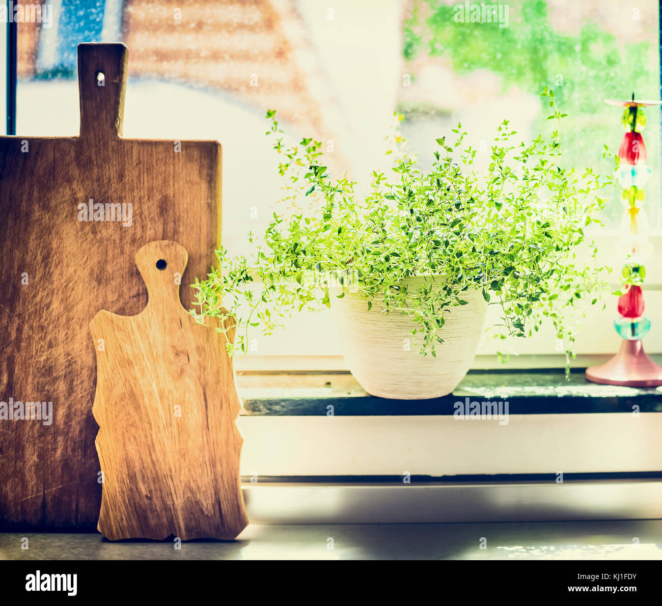 Kitchen cooking herbs in flowers pot on window still with cuting board - Stock Image