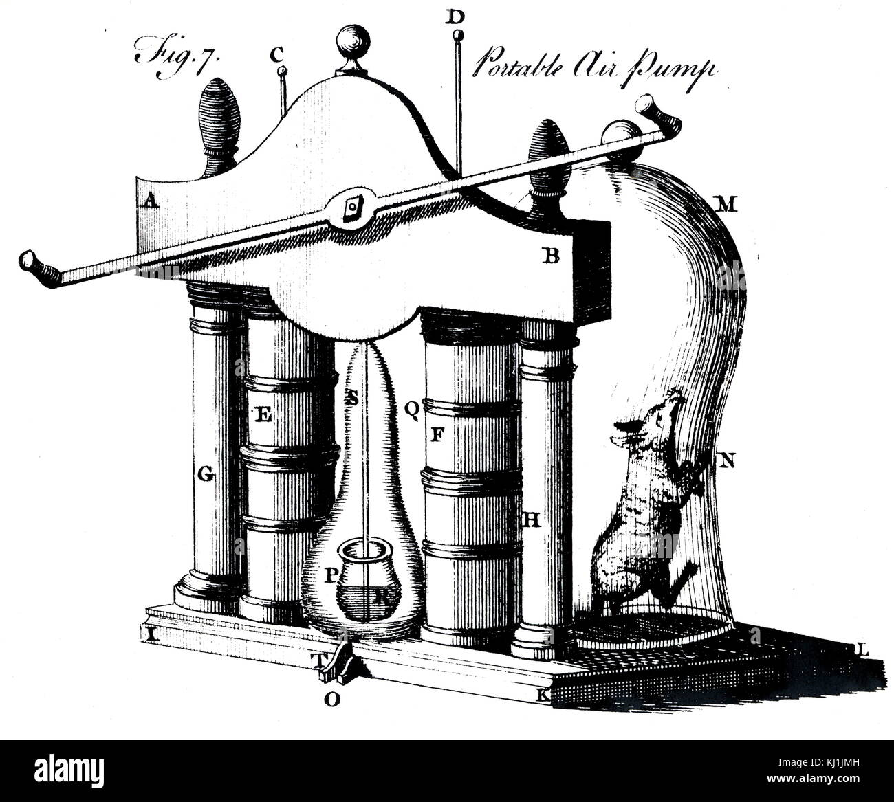 Engraving depicting the evacuating of a bell jar by means of a portable air pump in order to examine the effect - Stock Image