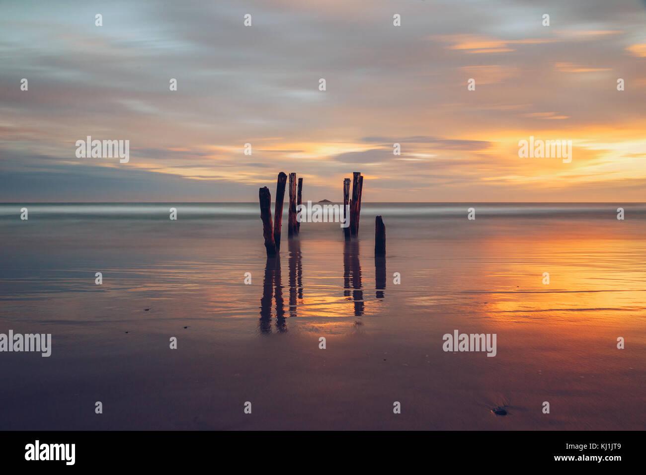 St Clair's Beach, Dunedin, New Zealand - Stock Image