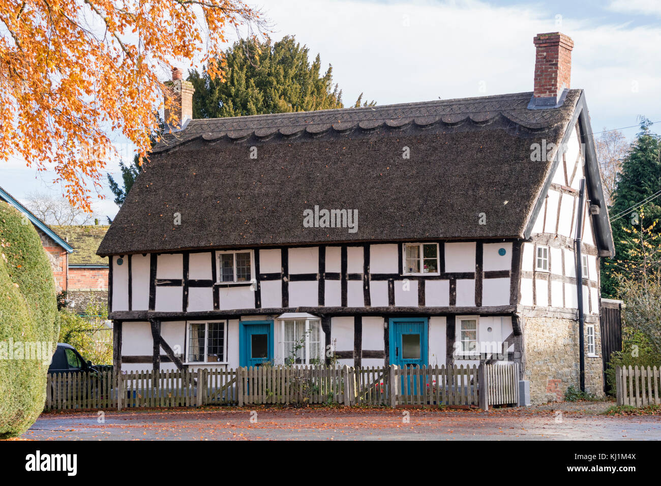 The ancient Yew hedge and Timber-framed cottage in the village of Brampton Bryan, Herefordshire - Stock Image