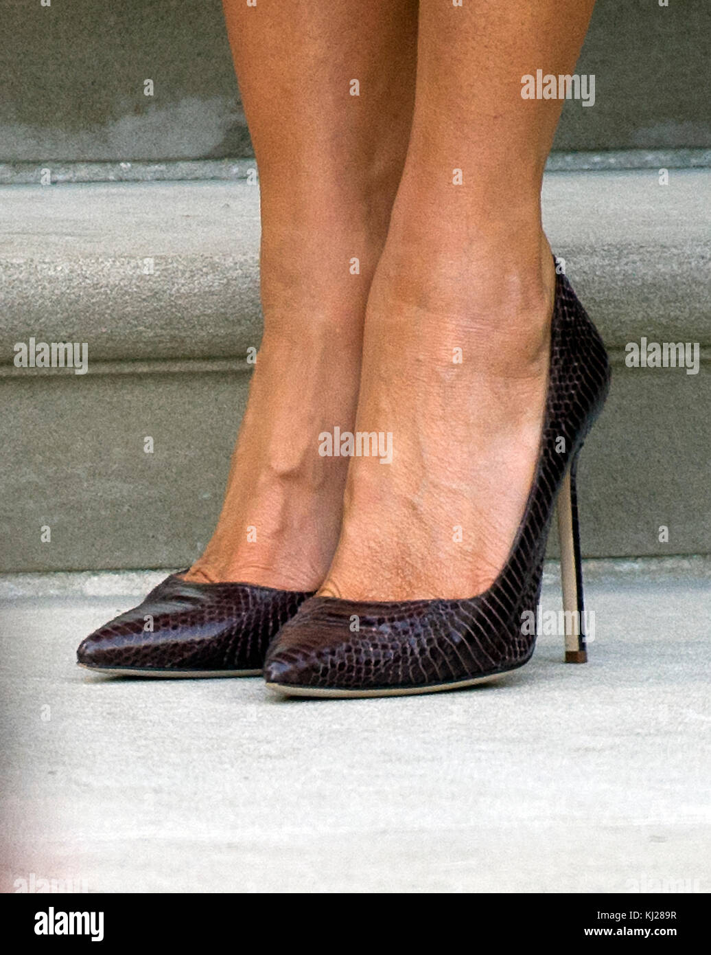 Melania Trump S Shoes