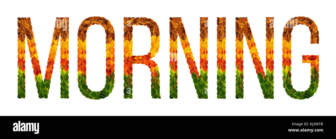 word morning written with leaves white isolated background, banner for printing, creative illustration of colored - Stock Image
