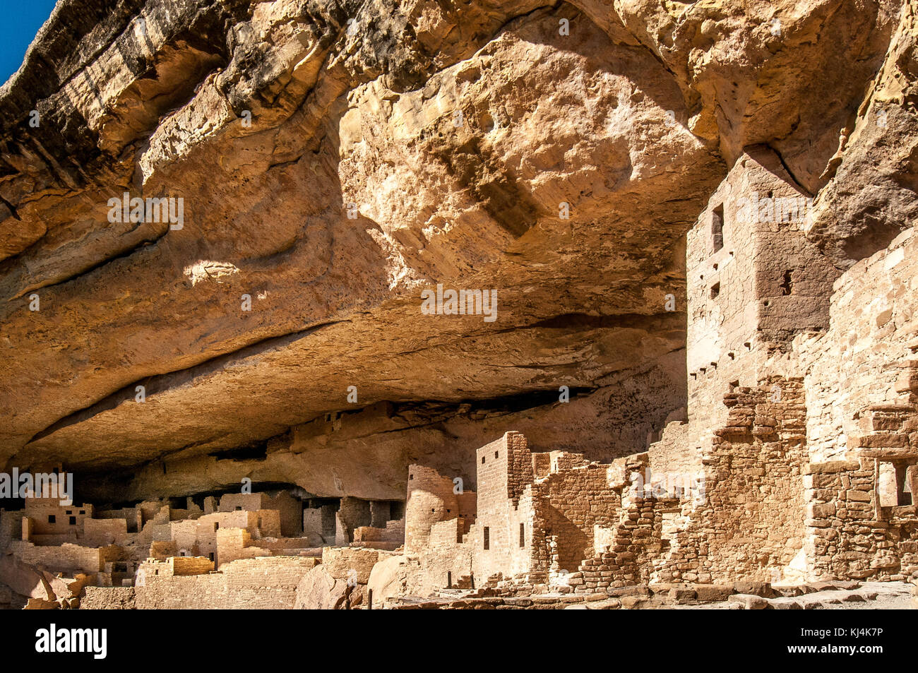 Cliff Palace, cliff dwelling habitat ruins of the Anasazis Indians in Mesa Verde National Park - Stock Image