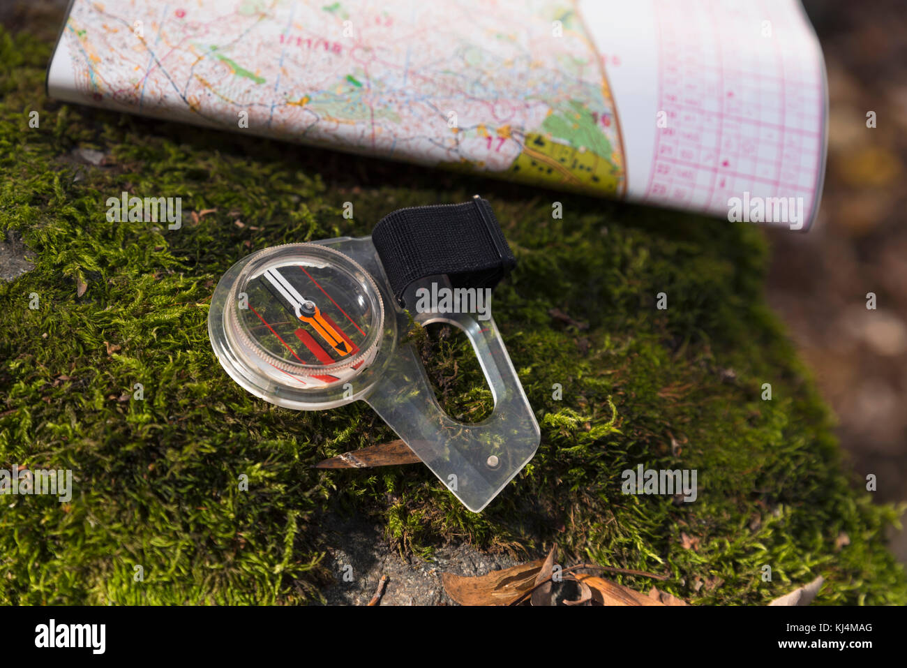 Compass Map Moss Orienteering Forest - Stock Image