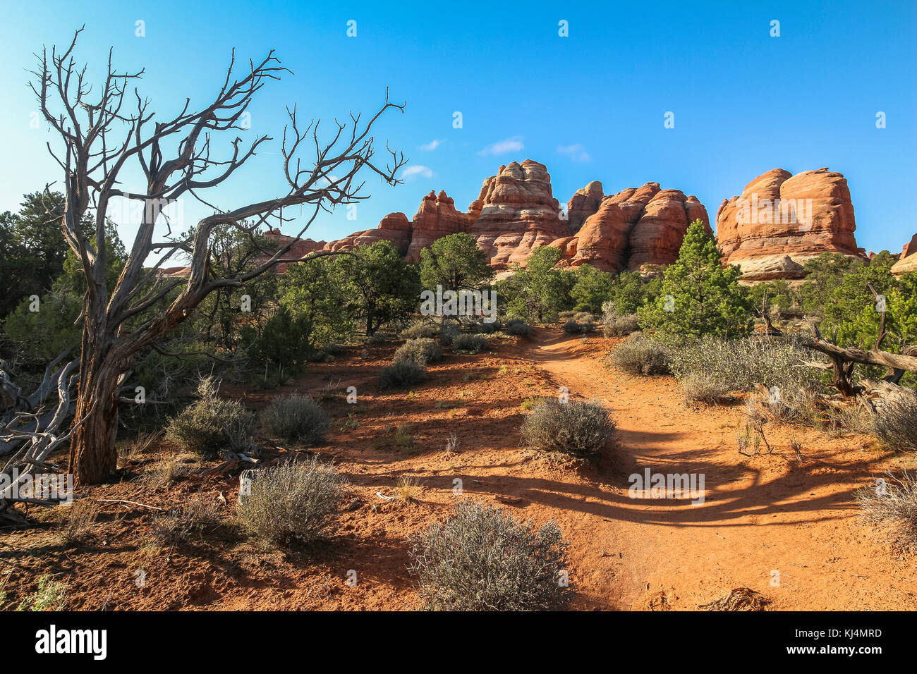 Beautiful red rocks landscape in Chesler park, needles district - Stock Image